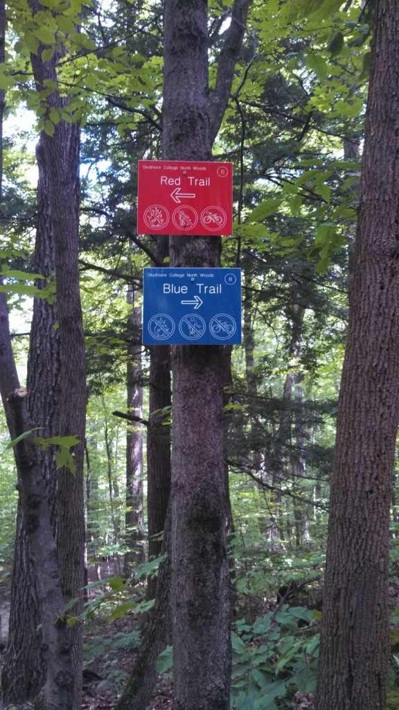 Blue and Red Trail Sign 8
