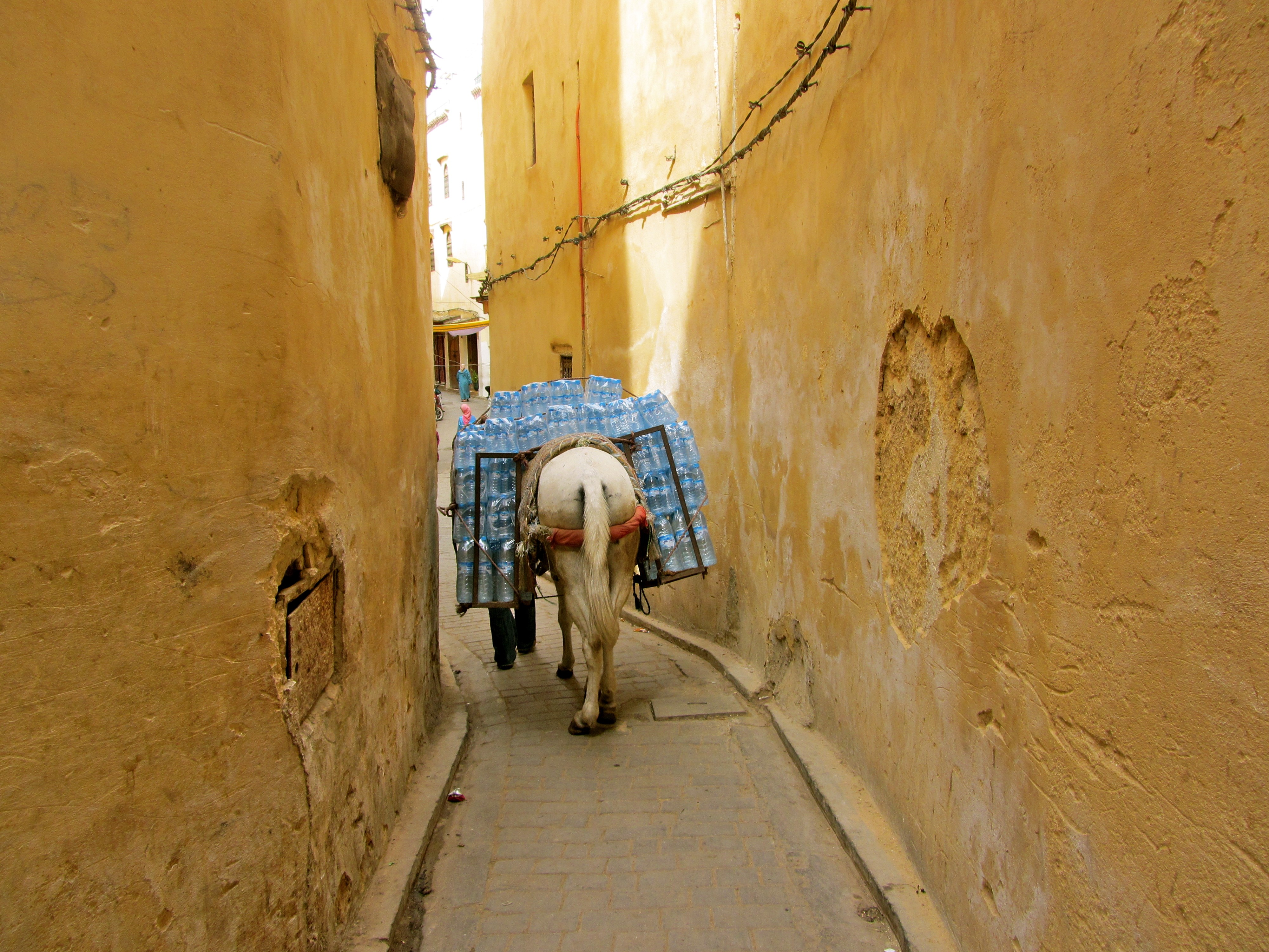 "Winner of the ""Sense of Place"" category. ""Water Delivery in the Medina"" was  taken by Lauren Bosche, who studied abroad on the International Honors Program."