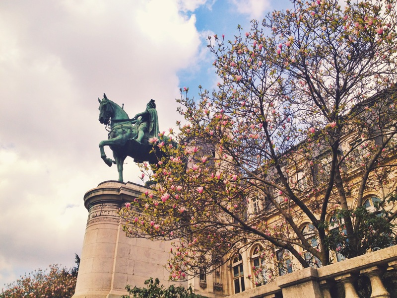 Cherry blossoms and blue skies by L'Hôtel de Ville